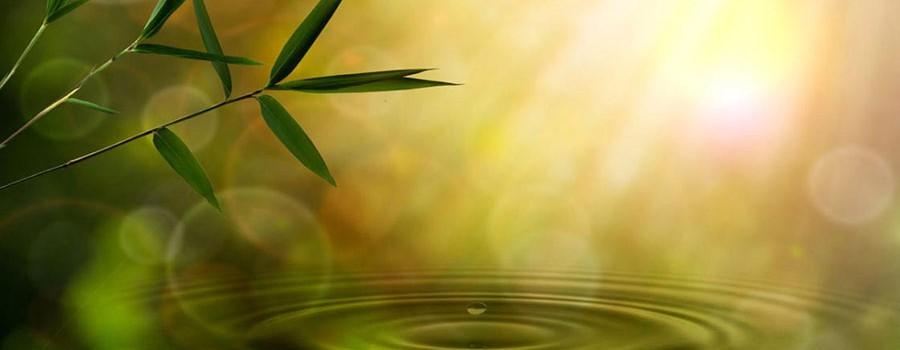 Image evoking serenity
